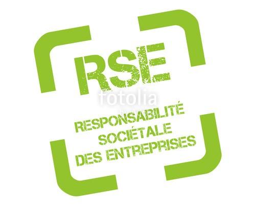 RSE, Ressources et carrières, valeurs, engagements